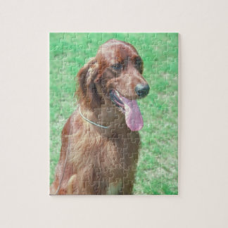 Irish Setter Dog Puzzle