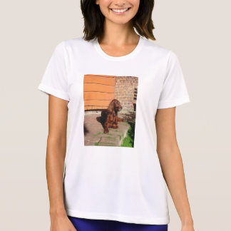 irish setter laying T-Shirt