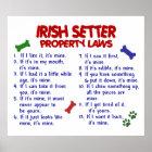 IRISH SETTER PL2 POSTER