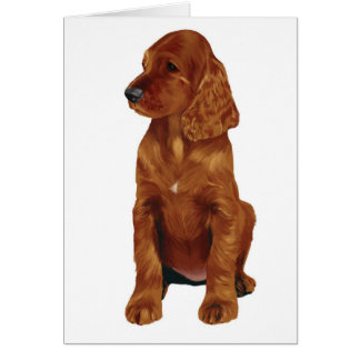 Irish Setter Puppy Card