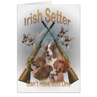 Irish Setters Can't Have Just One Cards