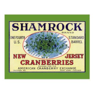 Irish Shamrock New Jersey Cranberry Postcard