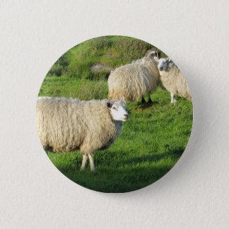 Irish Sheep 2 Inch Round Button
