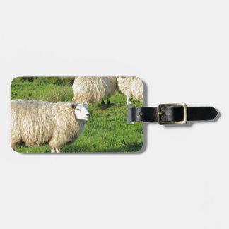 Irish Sheep Luggage Tag