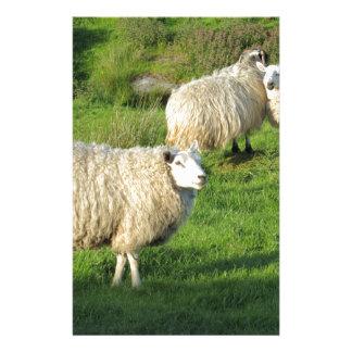 Irish Sheep Stationery
