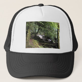 Irish Stream Trucker Hat