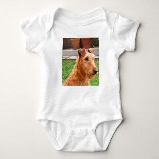 Irish_terrier_2 Baby Bodysuit