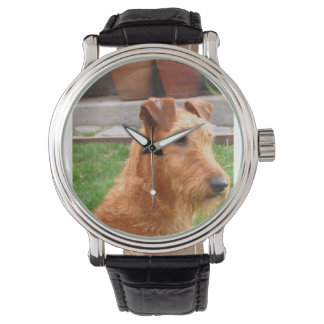 Irish_terrier_2 Watches