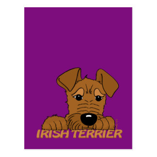 Irish Terrier head Cute Postcard