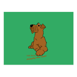 Irish Terrier - Simply the best! Postcard