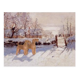 Irish Terriers in Winter Postcard