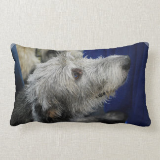 irish-wolfhound-2.jpg lumbar pillow