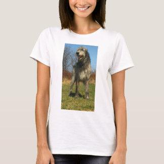 irish-wolfhound-full T-Shirt