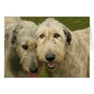 Irish Wolfhounds Card