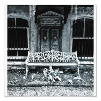 Iron Bench, Savannah Photograph
