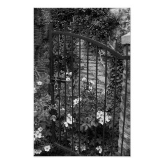 Iron Gate Vines Black And White PHotograph Poster