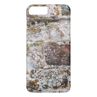 Irregular Stone Wall iPhone 7 Plus Case