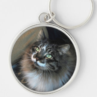 Irresistible Cat Zorro Keychain