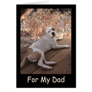 Irresistible Porch Dog Father's Day Card