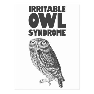 Irritable Owl. Funny pun Postcard