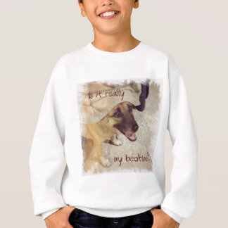 Is it really my bedtime? sweatshirt