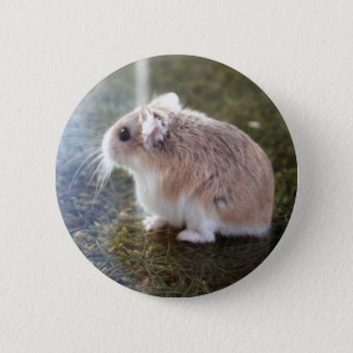 'Is that a bee'? - Tac Badge 2 Inch Round Button