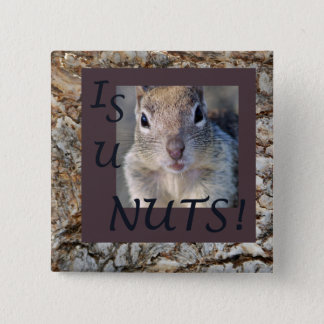 IS U NUTS! 2 INCH SQUARE BUTTON