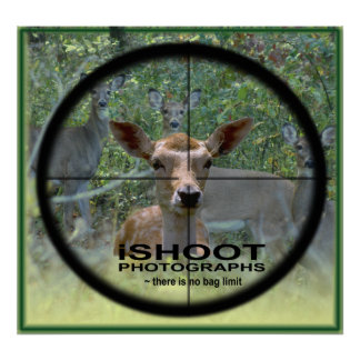 iSHOOT PHOTOGRAPHS (There is no bag limit) Posters