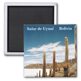 Isla del Pescado, Salar de Uyuni, Bolivia Square Magnet