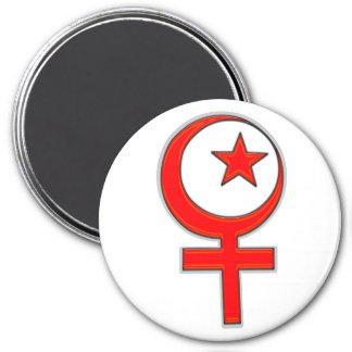 Islamic feminism... magnet