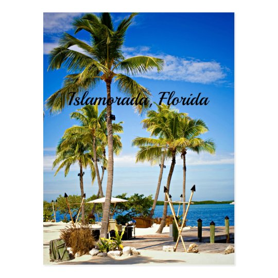 Islamorada, Florida Palm Trees Postcard
