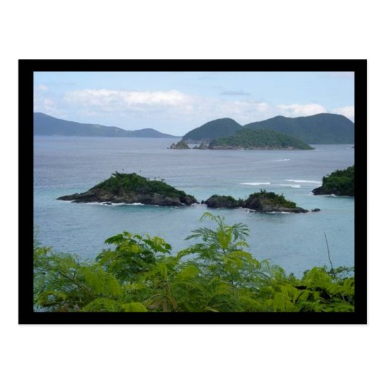Island Group Postcard