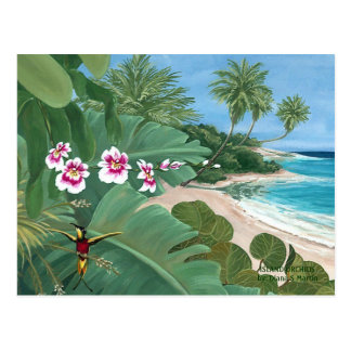 ISLAND ORCHIDS by  Diana S Martin Postcard