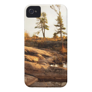 Island rocky shoreline iPhone 4 Case-Mate case