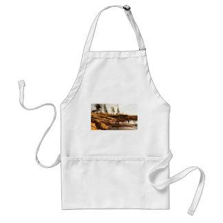 Island rocky shoreline standard apron