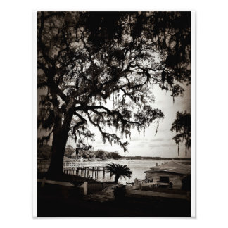 Isle Of Hope Photo Print