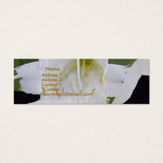 Ismene Spider Lily Profile Card