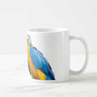 isolated ara ararauna parrot coffee mug