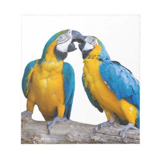 isolated ara ararauna parrot notepad