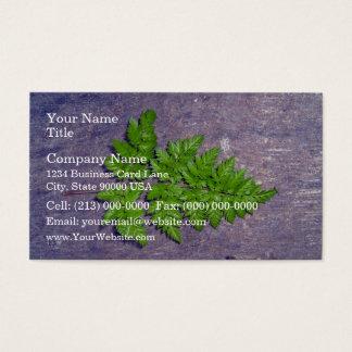 Isolated fresh fern leaf business card