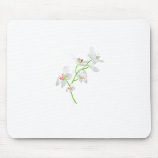 Isolated Orquideas Blossom Mouse Pad