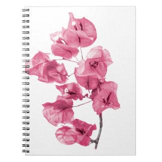 Isolated Santa Rita Flower Notebook