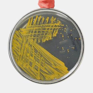 Isolation Streak of Bacteria Metal Ornament