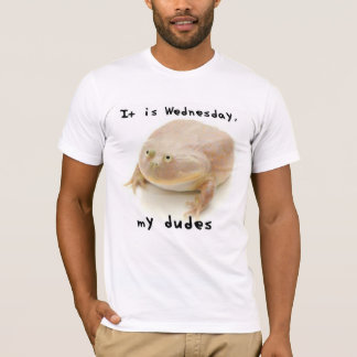 It is Wednesday My Dudes T-Shirt