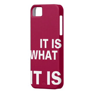 It is What it is iPhone 5 Cover