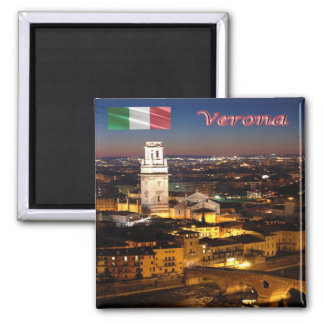 IT-Italy-Verona-Cathedral & Stone Bridge At Night Magnet