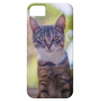 It marries an artistic photo of a cat iPhone 5 case