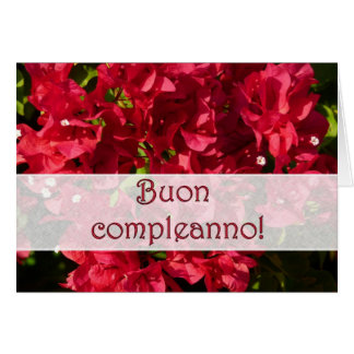 Italian Birthday Red Bougainvilleas Greeting Card