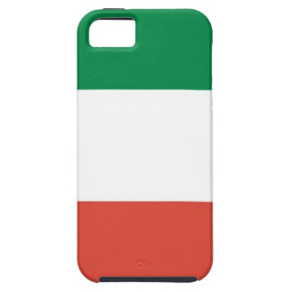 italian flag case for the iPhone 5