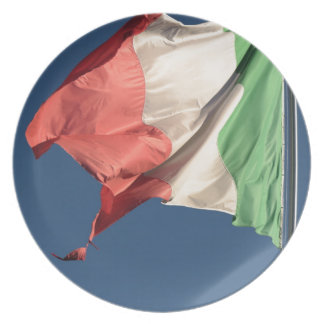 italian flag party plates